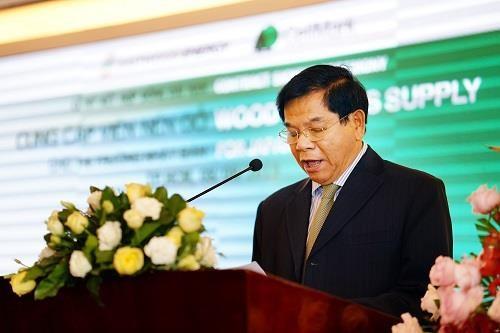 越南与瑞典公司合作向日本出口生物质固体成型燃料 hinh anh 2