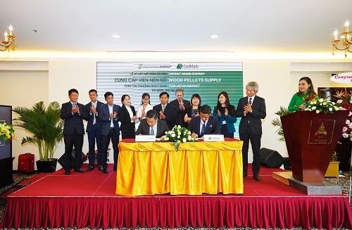 越南与瑞典公司合作向日本出口生物质固体成型燃料 hinh anh 1