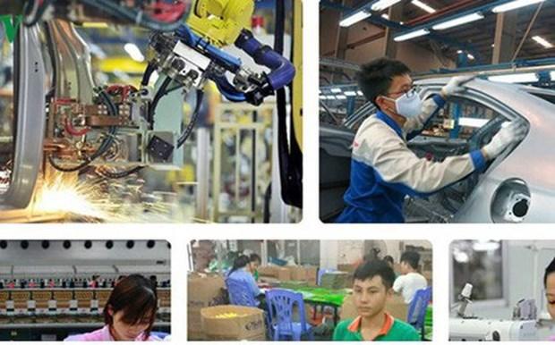 越南企业迎来德国市场的经营合作大机会 hinh anh 1