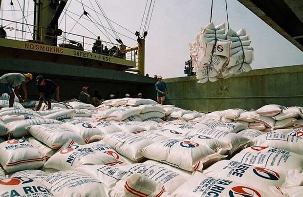 越南42家企业获得大米出口许可证 hinh anh 2