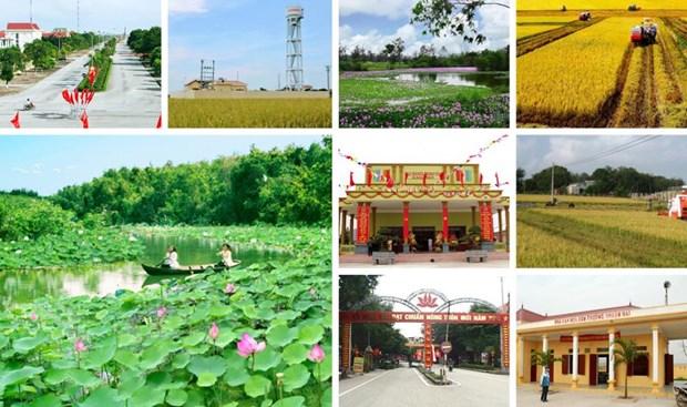 河内新农村建设既定目标提前两年完成 hinh anh 1