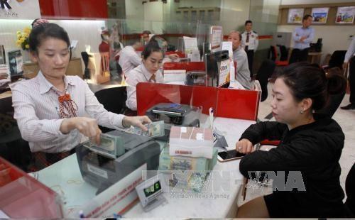 越南经济保持蓬勃发展活力 银行体系前景稳定 hinh anh 1