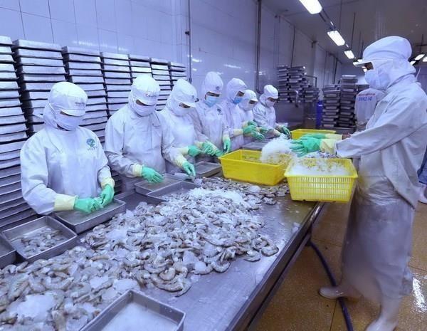 2019年Vietfish:越南与世界企业家进行合作的桥梁 hinh anh 1