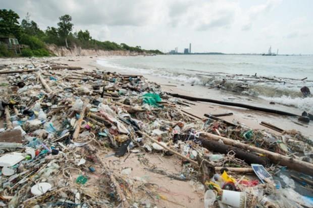 泰国消费者减少15亿个塑料袋的使用 hinh anh 1