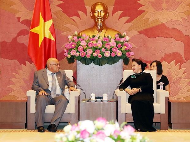 阮氏金银:越南一直以来是古巴的好同志、好朋友和好兄弟 hinh anh 1