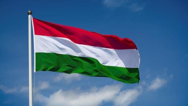 越南领导人向匈牙利领导人致国庆贺电 hinh anh 1