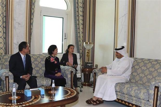 越共中央民运部部长对卡塔尔进行工作访问 hinh anh 1
