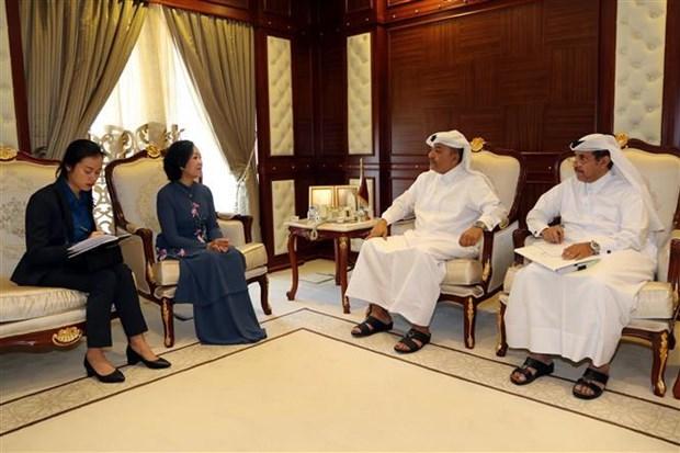 越共中央民运部部长对卡塔尔进行工作访问 hinh anh 3