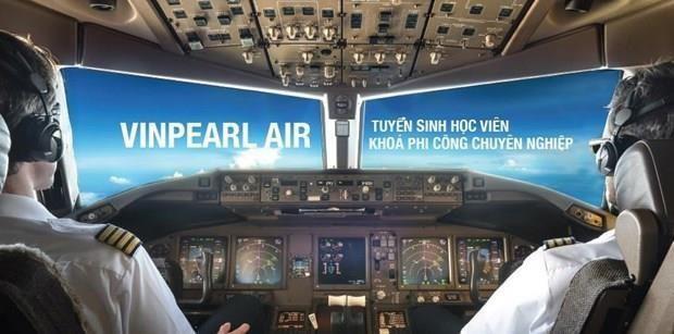 越南珍珠航空公司将于2020年7月开始运营国内和国际航班 hinh anh 1