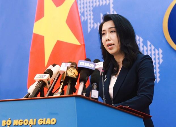 越南外交部发言人:要求中国停止侵犯行为并从越南专属经济区撤出全部船队 hinh anh 1