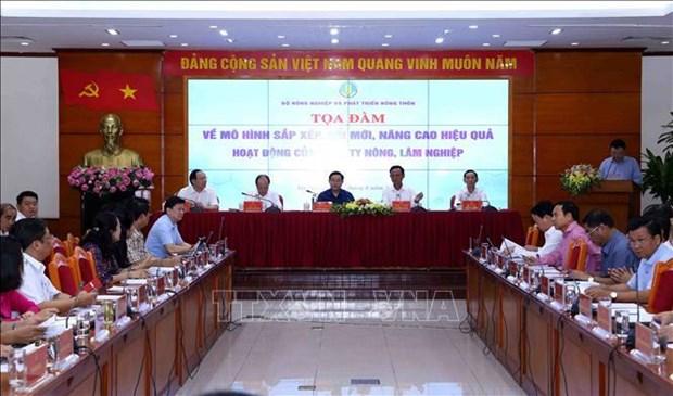 到2020年越南基本完成农林业公司的重组工作 hinh anh 1