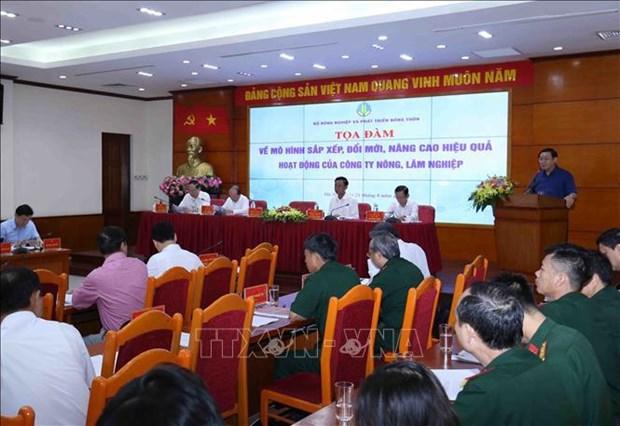 到2020年越南基本完成农林业公司的重组工作 hinh anh 2