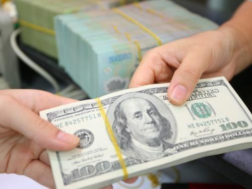 8月23日越盾对美元汇率中间价上调11越盾 hinh anh 1
