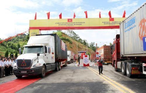 谅山省边防部队主动出击阻止非法出入境行为 hinh anh 1