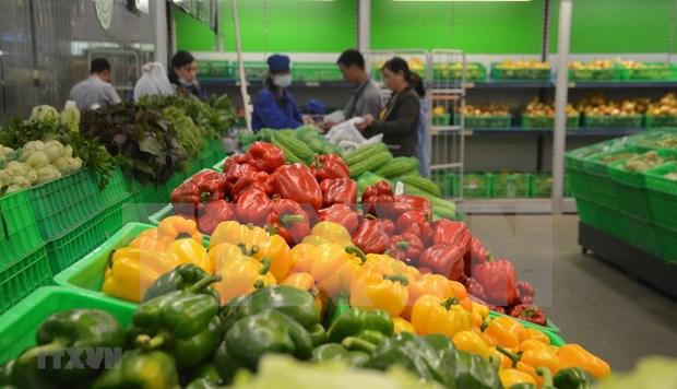 越南蔬果对中国的出口额大幅下降 hinh anh 1