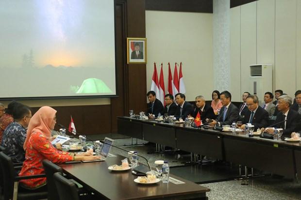 胡志明市希望与印尼加强在应对气候变化等方面的合作 hinh anh 1