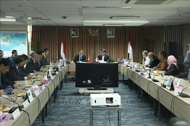 胡志明市促进与印度尼西亚各合作伙伴的全面合作 hinh anh 1