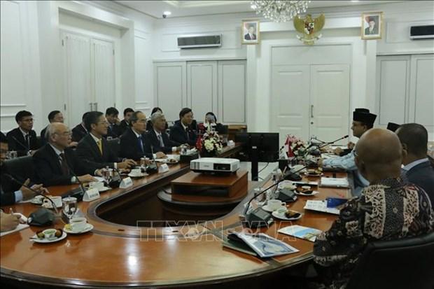 胡志明市促进与印度尼西亚各合作伙伴的全面合作 hinh anh 2