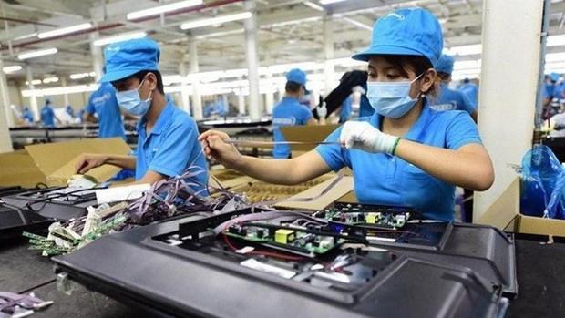 促进企业可持续发展:新的商机 hinh anh 1