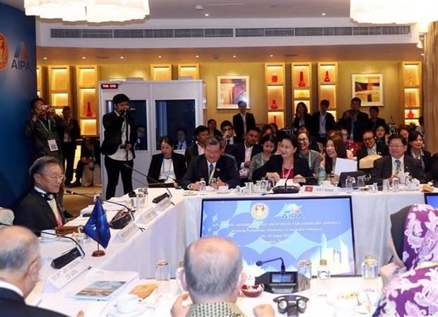 越南国会主席阮氏金银出席AIPA委员会会议 hinh anh 2