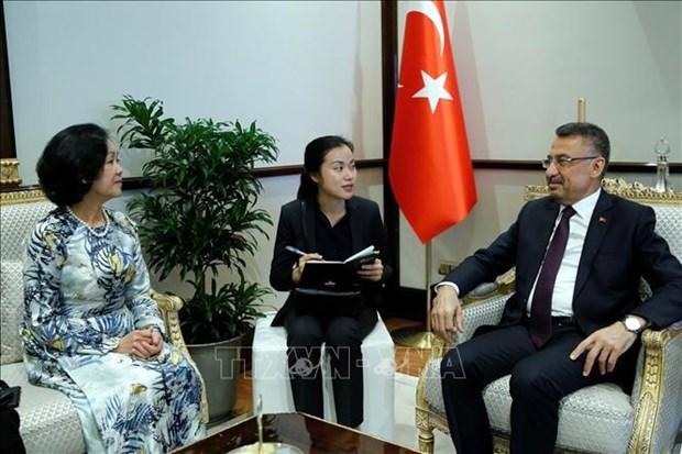 中央民运部部长张氏梅对土耳其进行工作访问 hinh anh 1
