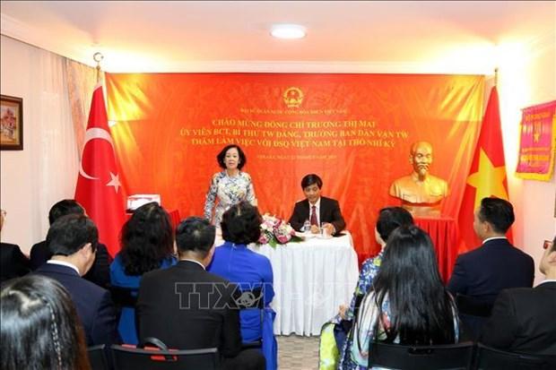 中央民运部部长张氏梅对土耳其进行工作访问 hinh anh 3