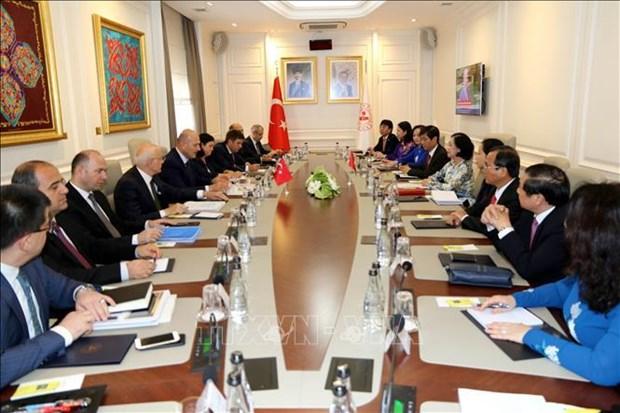 中央民运部部长张氏梅对土耳其进行工作访问 hinh anh 2