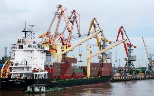 越南国家航运公司有计划发展面向欧洲的物流服务 hinh anh 1