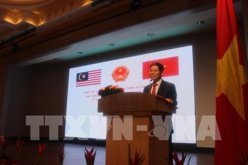 越南与马来西亚合作关系仍有巨大潜力有待挖掘 hinh anh 1
