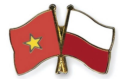 进一步加强越南与波兰经贸与投资合作 hinh anh 1