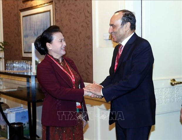 越南国会主席阮氏金银会见摩洛哥众议院议长哈比博•马勒克 hinh anh 1
