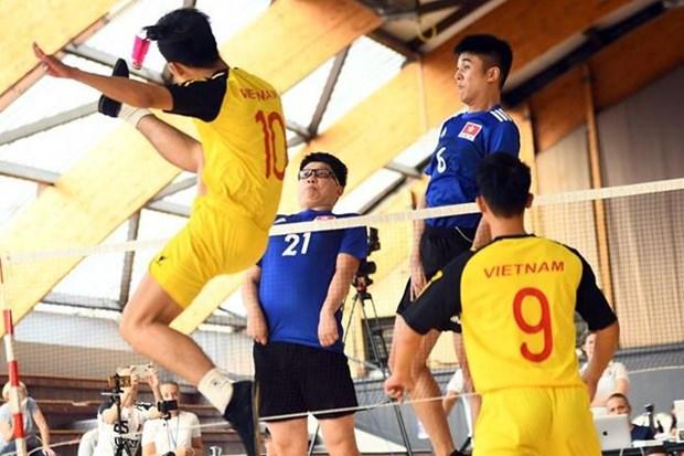2019年第十届世界毽球锦标赛:越南队获5金2银排名榜首 hinh anh 1