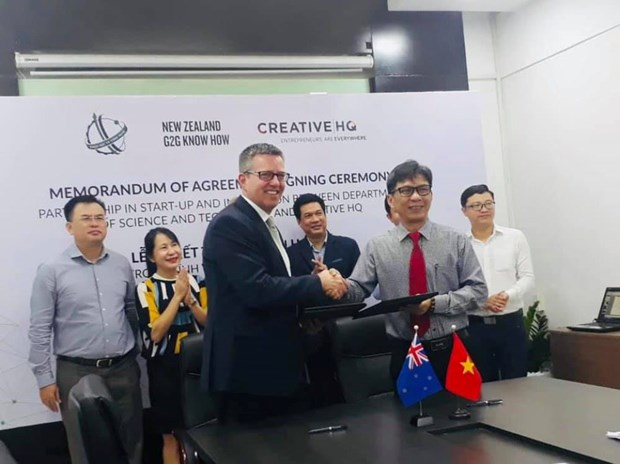 胡志明市与新西兰合作发展创新创业生态系统 hinh anh 1