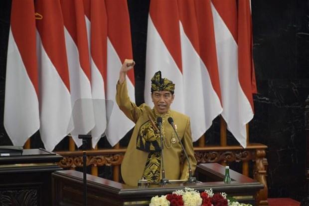 印尼新首都将坐落在东加里曼丹省 hinh anh 1