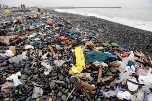 全球终结塑料垃圾联盟投入10亿美元助力解决东南亚塑料垃圾 hinh anh 1