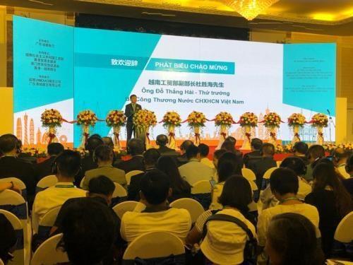与中国广东加强贸易和投资的合作 hinh anh 1