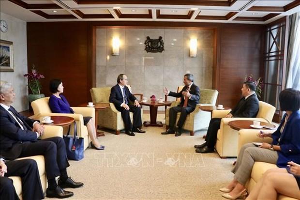 胡志明市与新加坡促进创新创业合作 hinh anh 2