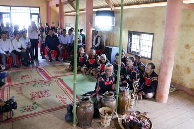 得乐省高原地区嘉莱族举行颇具特色的新米节 hinh anh 3