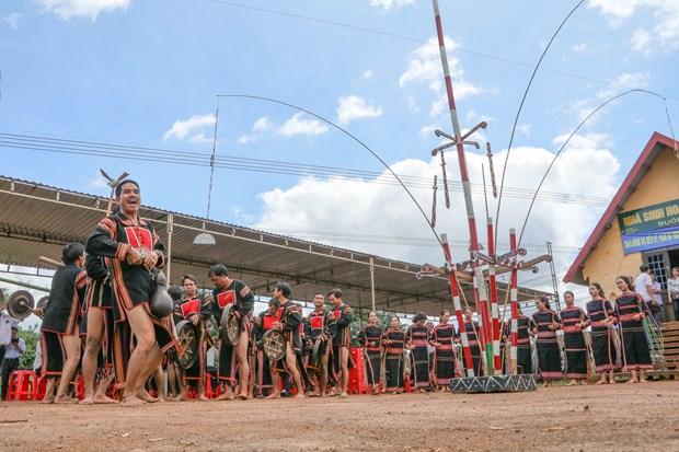 得乐省高原地区嘉莱族举行颇具特色的新米节 hinh anh 2