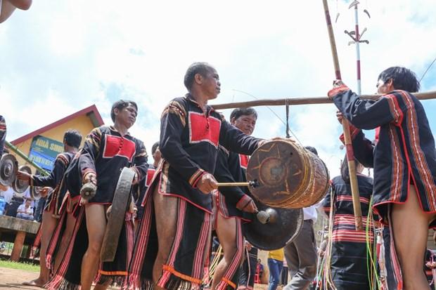 得乐省高原地区嘉莱族举行颇具特色的新米节 hinh anh 1