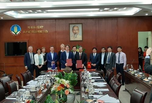 越南与澳大利亚促进农业合作 hinh anh 1