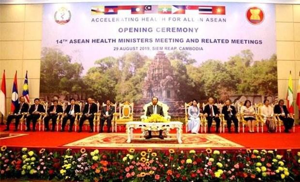 越南卫生部代表团出席第14届东盟卫生部长会议 hinh anh 1