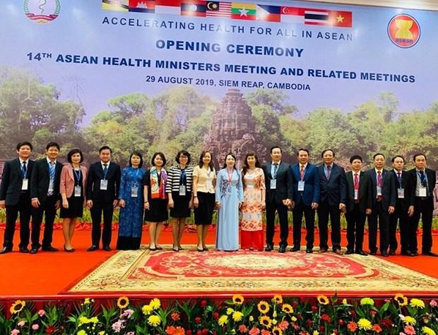 越南卫生部代表团出席第14届东盟卫生部长会议 hinh anh 2