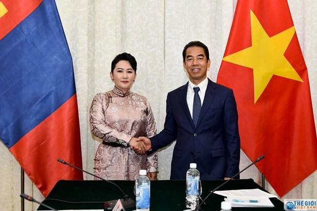 第八次越南-蒙古外交部副部长级政治磋商会议在河内召开 hinh anh 1
