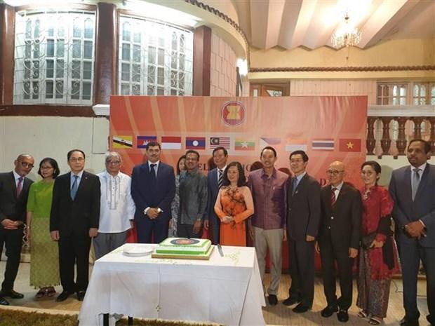 越南驻埃及大使馆举行东盟成立52周年庆祝活动 hinh anh 1