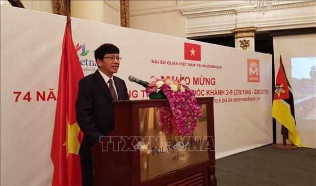 越南驻外国外交机构举行九·二国庆节纪念活动 hinh anh 2