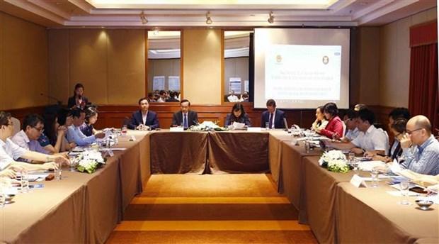 越南东盟第三阶段一体化倡议工作计划开展情况国家磋商会举行 hinh anh 1
