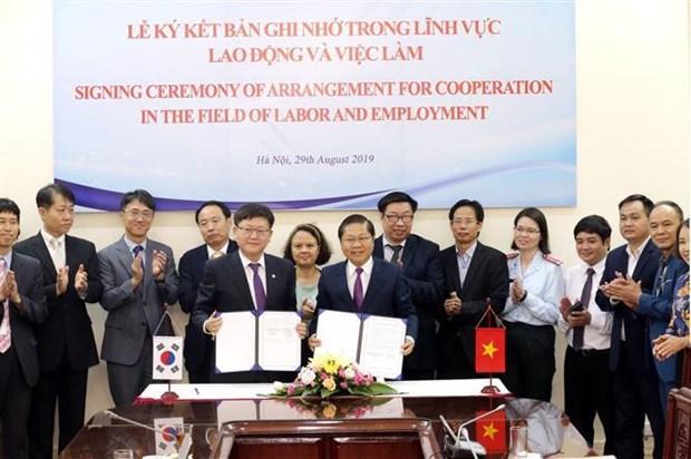 越南与韩国在劳动与就业领域展开全面合作 hinh anh 1