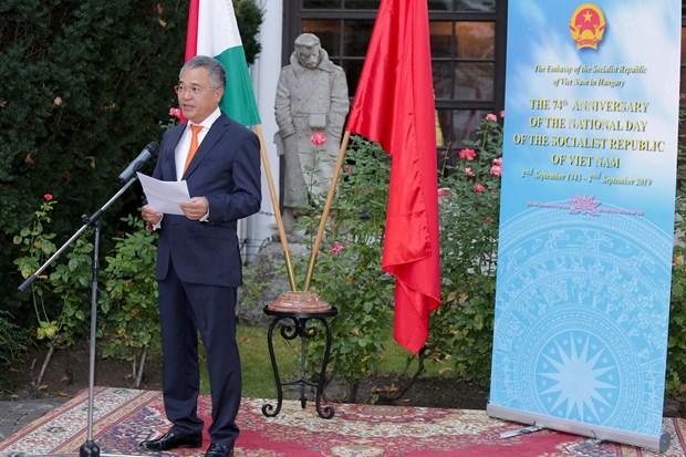 越南与匈牙利关系正处于巅峰时期 hinh anh 1