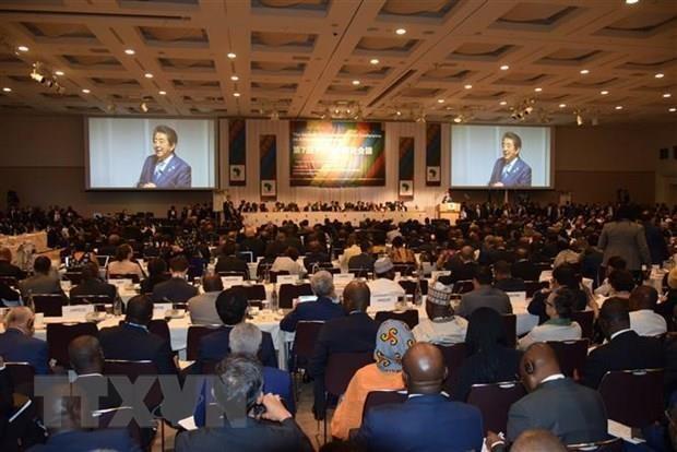 越南代表团出席第七届东京非洲发展国际会议 hinh anh 1